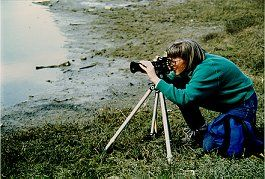 Debby Nixon concentrates on shorebirds at Dungeoness Spit, Washington State. Photo by Lorelle VanFossen