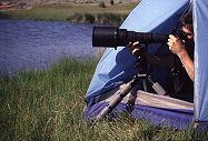 Using a regular tent, Brent photographs birds at the water edge. Photo by Lorelle VanFossen