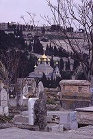 View from the Muslim Cemetery onto the Kidron Valley, Jerusalem, photo by Lorelle VanFossen
