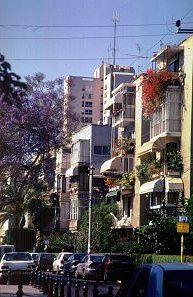 The street we live on in Tel Aviv, photo by Lorelle VanFossen