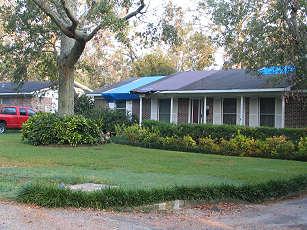 Blue tarps quilt roof tops from hurricane Katrina damage, photograph by Lorelle VanFossen