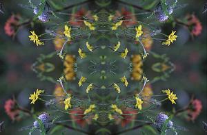 Alpine Wildflowers Photoquilt, Photo by Brent VanFossen
