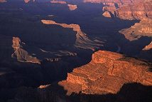 In this vast scenic of the Grand Canyon, how many subjects can you count? Photo by Brent VanFossen