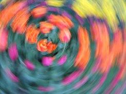 tulip blur circles 20 lorelle vanfossen