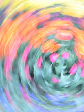 tulip blur circles 25 lorelle vanfossen