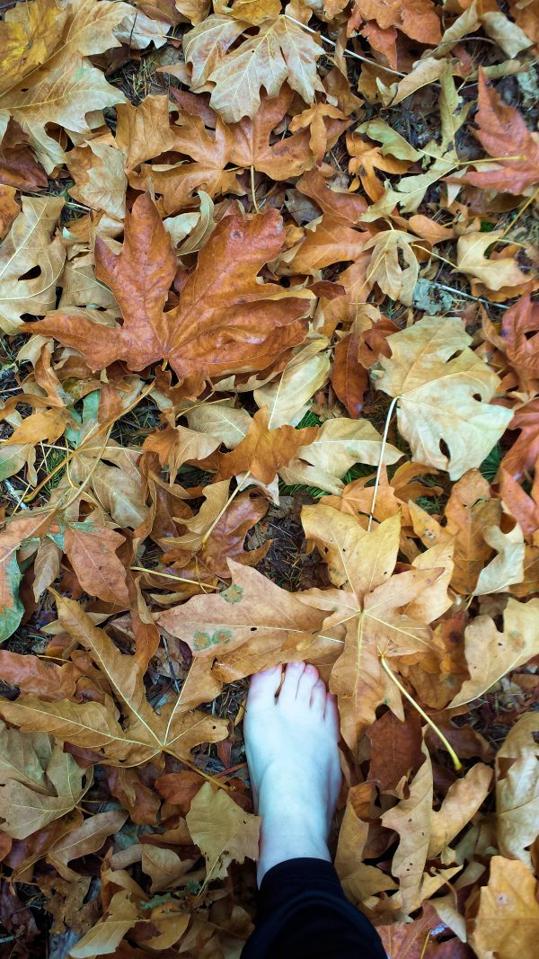 Foot stepping in dried fall leaves on ground - photography by Lorelle VanFossen.