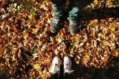 manchester, autumn, fall, 2012, life, love, family, season,