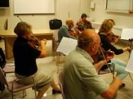 Druge, viole in violončela