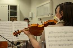 Prva violina, Vila.