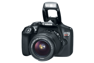 Canon EOS Rebel T6 Manual, a Camera Manual for Beginner Photographer