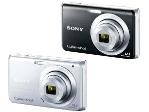 Sony DSC-W190 Manual (camera variant)