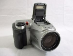 Olympus D-500L Manual User Guide and Product Specification