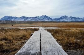 Landscape Photography: Type, Tips & Tricks 2
