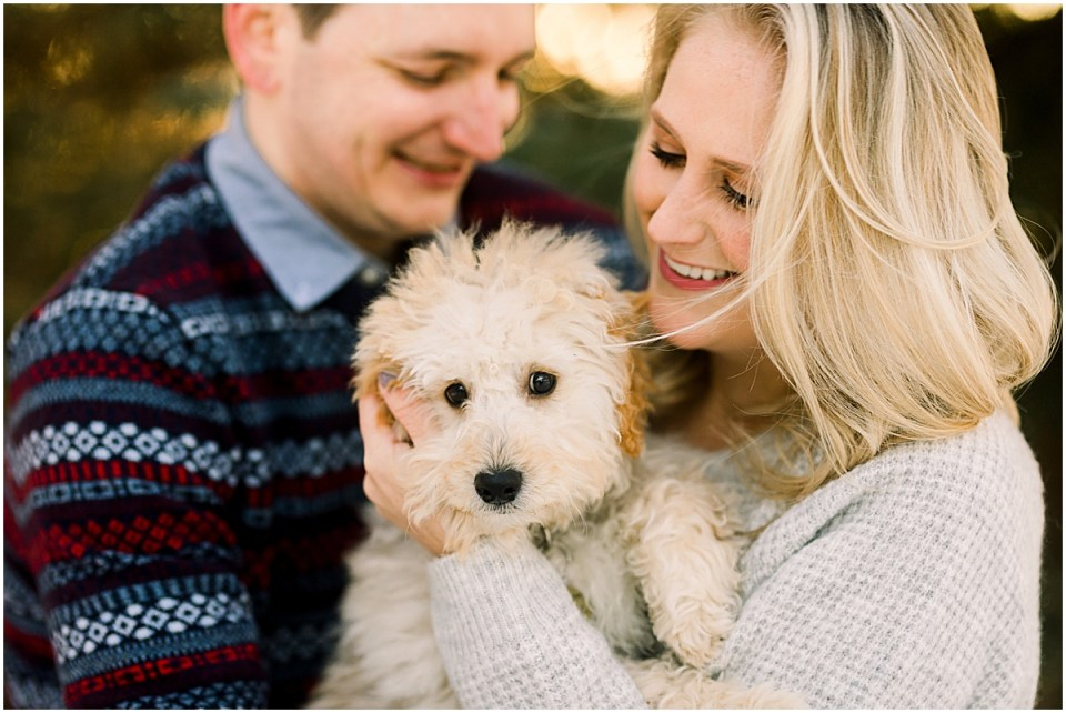 Mini Goldendoodle at winter engagement session