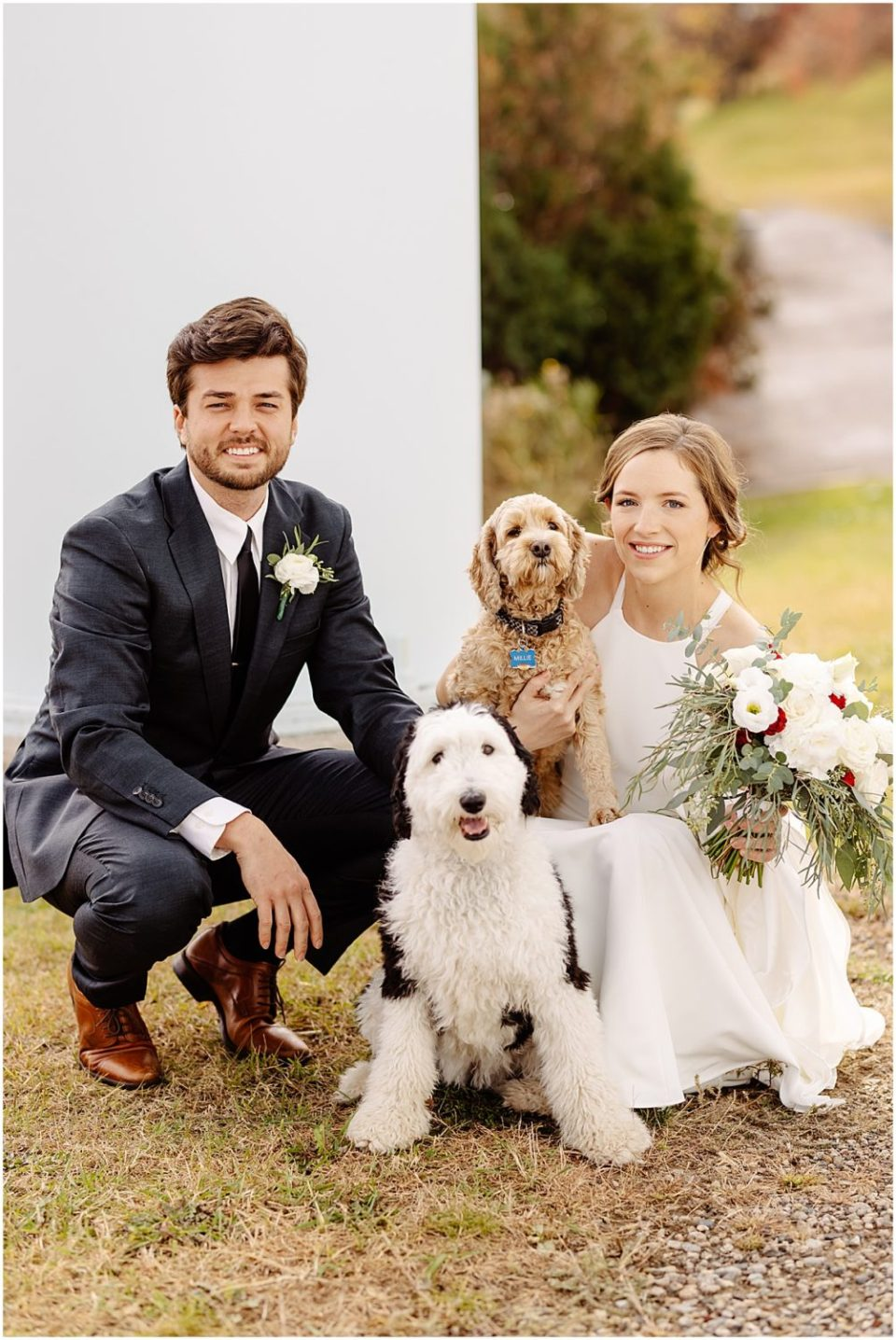 wedding portraits with dogs