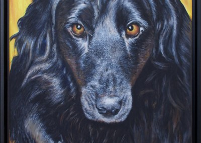 2013-03 - Commissioned Pet Portrait Painting - Molly- complete2