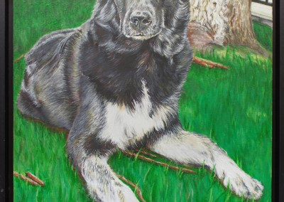 2013-05 - Commissioned Painting - Pet Portrait Painting - Shanna Complete