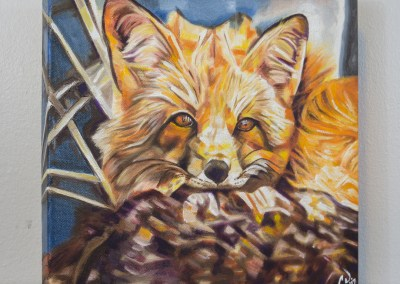 Cozy Fleece Fox by Cameron Dixon - DSC09938-complete-right