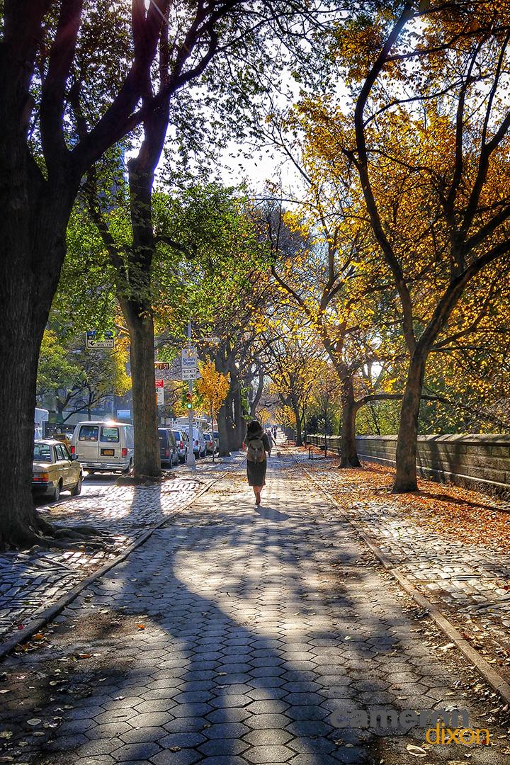 2016-11-Central-Park-Sidewalk-1080px-Cameron-Dixon