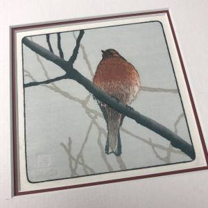 handmade woodblock print of chaffinch bird perched on branch
