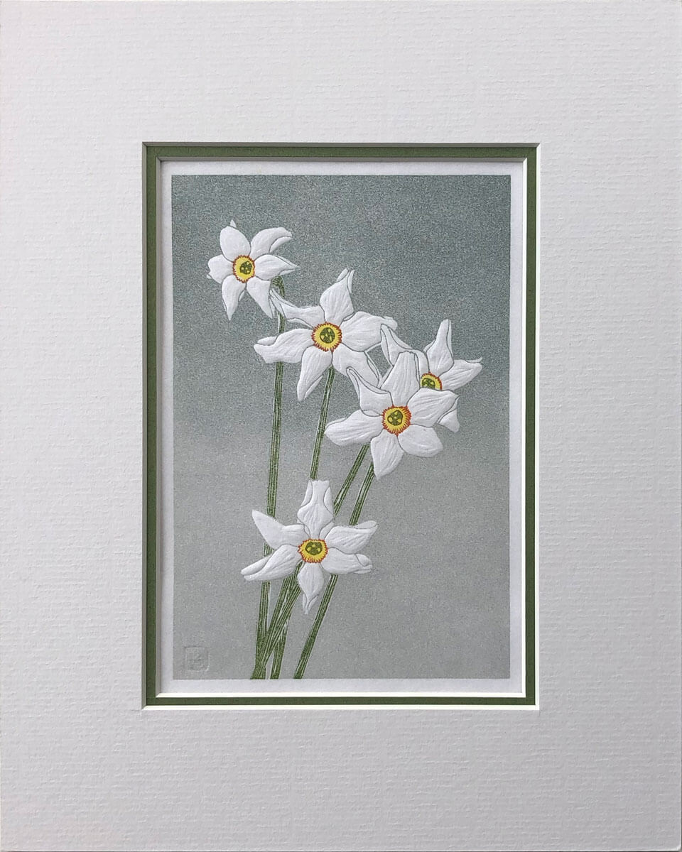 Narcissi mounted