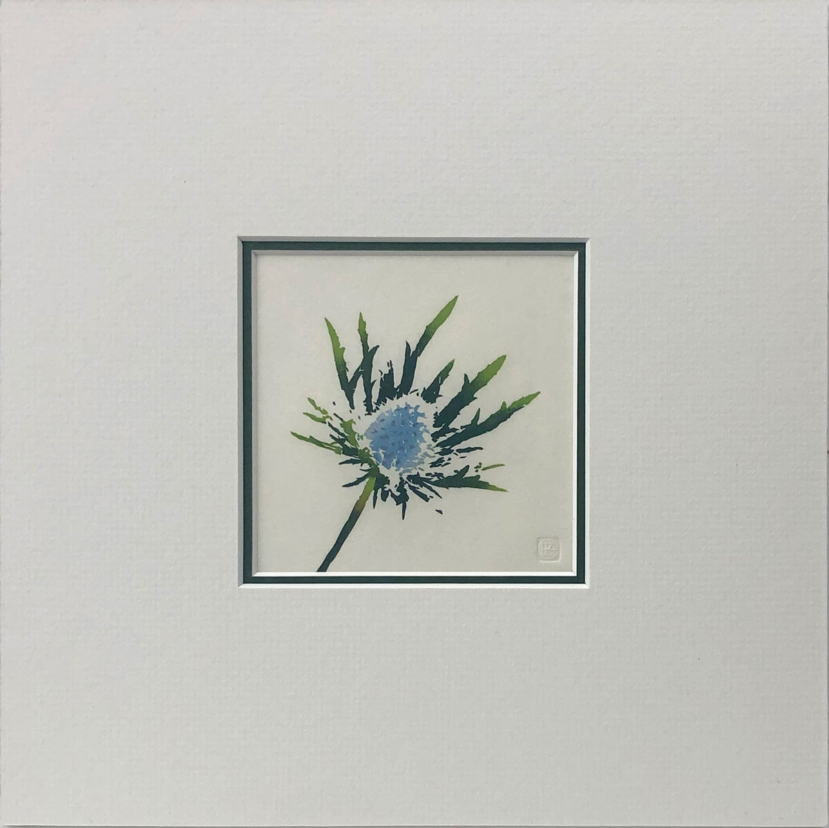 Eryngium woodblock print mounted by Claire Cameron-Smith