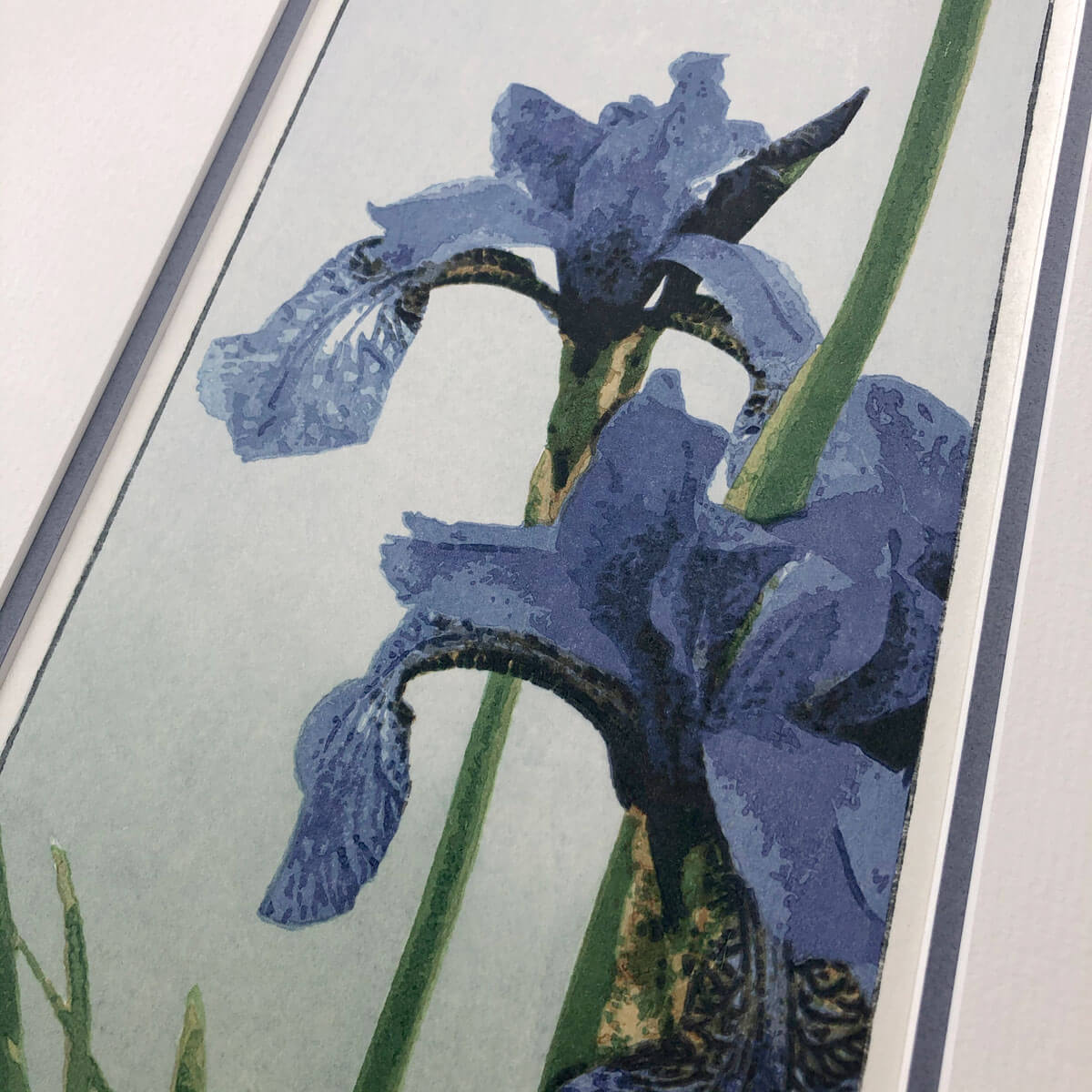 handmade limited edition woodblock print of purple iris flowers and green foliage against a graded pale blue green background