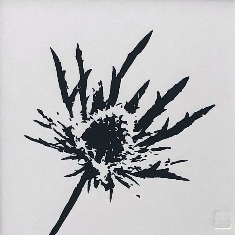 Sea Holly woodblock print by Claire Cameron-Smith