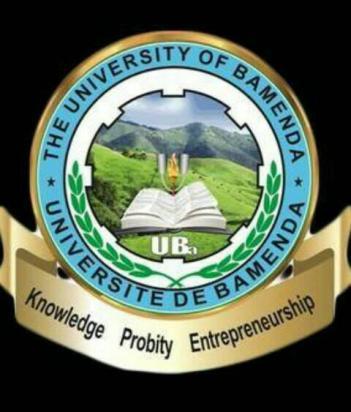 The University of Bamenda