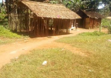 Cameroun: l'exploitation forestière à grande échelle force les autochtones Baka à quitter les forêts