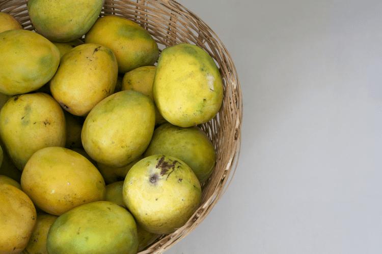 Buschmango, Wilde Mango