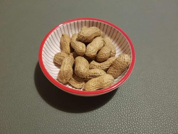 frische Erdnüsse in Schale