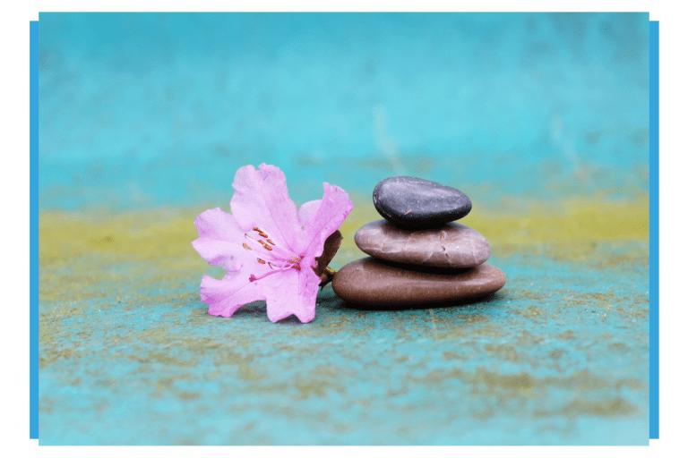 11 Plataformas para Terapeutas Divulgarem seu Trabalho