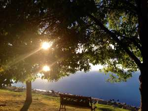 Be With the Pain Bench at Lake with Sun Beams Poem 2017