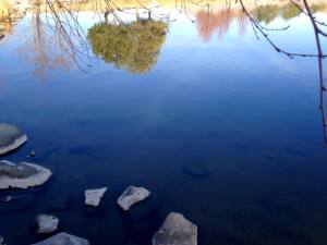 Walk with Lillian Vintage Lake 1.28.18 #3