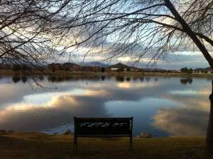 The Vintage Lake with Empty Bench February 2016