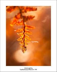 Autumn painting
