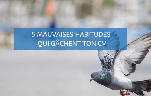 5 mauvaises habitudes qui gâchent ton CV - Blog Camille Gautry - Optimisation de Carrière et de Recrutement | Expatriation | Retour en France