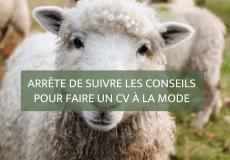 Arrête de suivre les conseils pour faire un CV à la mode - Blog Camille Gautry - Optimisation de Carrière et de Recrutement | Expatriation | Retour en France