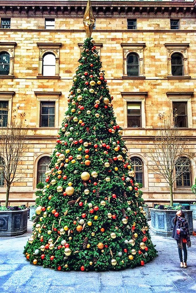 10 Best Christmas Trees   Camille Styles