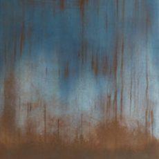 imagen enlace al portafolio de la serie de fotografía química experimental sobre tela