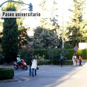 Viernes 2 de mayo.Salida: 6.30 p.m. desde la Madraza (Calle Oficios, 14)Llegada: 8.00 p.m. Las Torres (Calle Raya)Un paseo a través de distintas etapas del crecimiento de la ciudad, desde el Centro hasta el barrio de la Chana. Este itinerario liga importantes hitos universitarios: la Madraza (germen de la Universidad en Granada, hoy día espacio universitario en pleno centro), la plaza de la Universidad (¿podría mejorarse como lugar de estancia), la calle Rector López Argüeta (una oportunidad arruinada por el tráfico motorizado) el Campus de Fuentenueva (corazón, isla y barrera) y finalmente, la barriada de las Torres en La Chana, donde la vida universitaria de los estudiantes allí alojados ha supuesto un revulsivo para el barrio. A lo largo del paseo tendremos oportunidad de reflexionar sobre cuestiones candentes como la entrada del AVE en la Chana, el papel y las posibilidades urbanas del Campus de Fuentenueva en relación con la estación de trenes y la gran barrera que este par crea entre los barrios de su entorno.Paseo guiado por Ana Montalbán, arquitecta y coordinadora de Camina Granada.