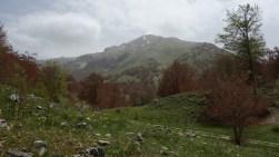 Le mont Miletto (2050m) dans le Matese