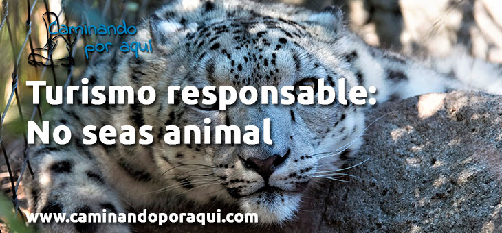 Turismo responsable: No seas animal