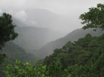Kabayan (132)