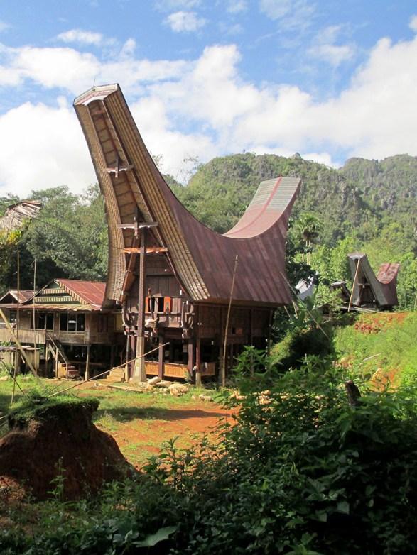 Tana Toraja (8)