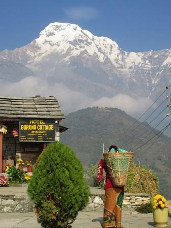 Annapurnas (216)