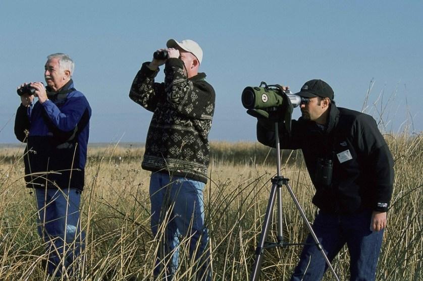 imagem-de-turistas-observando-aves