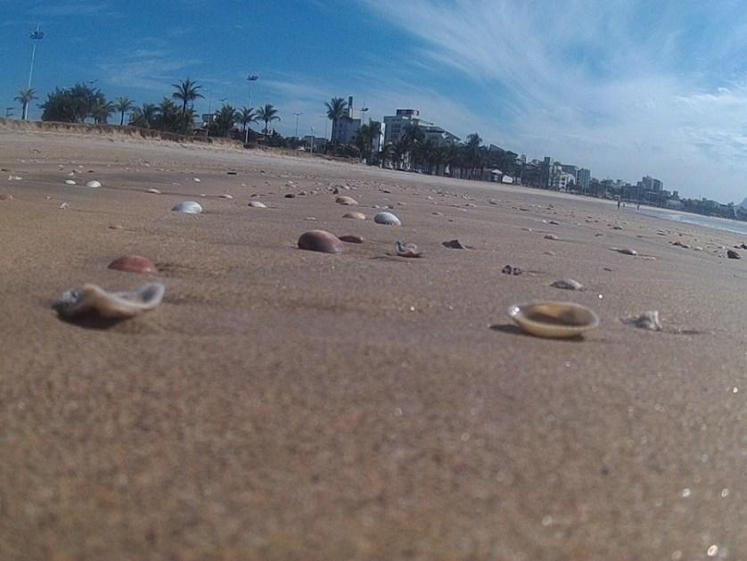 imagem-de-conchas-na-areia-da-praia