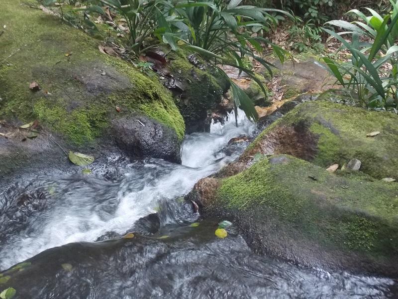 trindade e suas belezas naturais foto de queda dagua - Trindade. Belezas naturais praias e cachoeiras em harmonia.